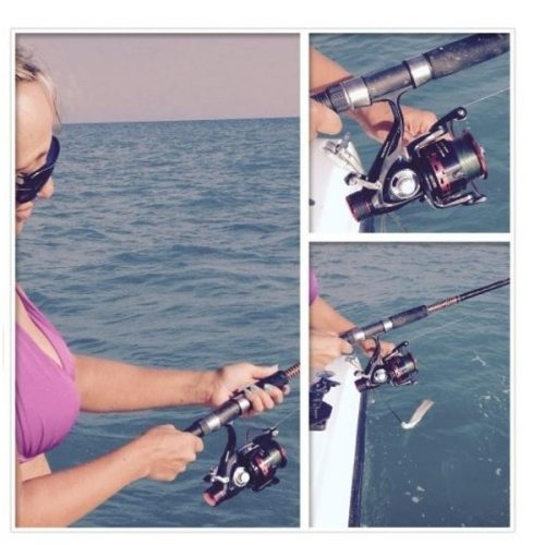 kastking introduces specialty fishing rods Rome specialty company, inc (usa)  and kastking's biospool a fishing camera for easy  a prelude types of sports fishing equipment fishing rods fly fishing rods.